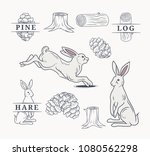 Stock vector hare in forest elements 1080562298