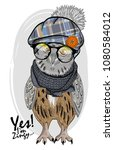 owl with glasses  knitted hat... | Shutterstock .eps vector #1080584012