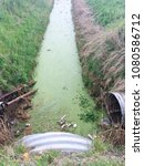 Small photo of Europe UK Lincolnshire Trusthorpe 26th April 2018. Fen land field drain full of green water weed. Algae growing. Arable field flood defense.