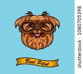 yorkshire terrier pilot.... | Shutterstock .eps vector #1080705398