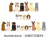 various dogs border set   Shutterstock .eps vector #1080733835