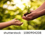 close up of senior hands giving ... | Shutterstock . vector #1080904208