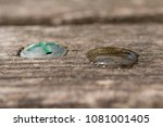 water drop on a wooden surface     Shutterstock . vector #1081001405