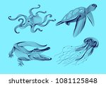 set marine graphic animals.... | Shutterstock .eps vector #1081125848