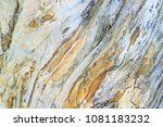 curved wood surface | Shutterstock . vector #1081183232