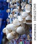 Wall decor made of shells - stock photo