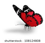 Stock photo red butterfly isolated on white 108124808