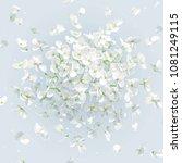 floral vector art   luxurious... | Shutterstock .eps vector #1081249115