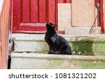 Stock photo black cat sits on old steps 1081321202