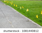 Row Of Yellow Caution Flags Fo...
