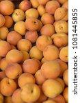 fruit wallpaper  pile of fruit   Shutterstock . vector #1081445855