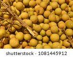 fruit wallpaper  pile of fruit   Shutterstock . vector #1081445912
