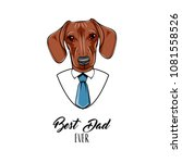 dachshund dog. fathers day... | Shutterstock .eps vector #1081558526