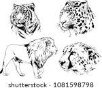 vector drawings sketches...   Shutterstock .eps vector #1081598798