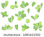 vector hand drawn leaves set.  | Shutterstock .eps vector #1081621502