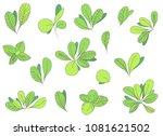 vector hand drawn leaves set.    Shutterstock .eps vector #1081621502