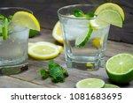 summer cocktail. mojito  tonic... | Shutterstock . vector #1081683695