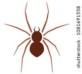 spider icon. pest control... | Shutterstock .eps vector #1081691558