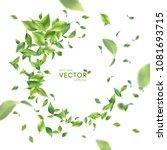 green flying or falling off... | Shutterstock .eps vector #1081693715