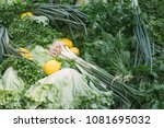 vegetables  herbs  salad ... | Shutterstock . vector #1081695032