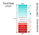 ph scale with ph values of some ... | Shutterstock .eps vector #1081704128