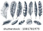 set of rustic realistic... | Shutterstock .eps vector #1081781975