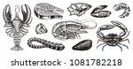 Crustaceans  Shrimp  Lobster O...