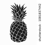 Illustration Of Pineapple....