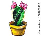 cactus succulent  isolated on a ... | Shutterstock .eps vector #1081853432