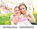 elderly grandmother in...   Shutterstock . vector #1081896056
