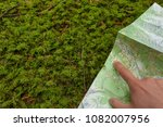 Small photo of finding the right position in the forest with a map