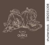 quince  fruit  flower  leaves... | Shutterstock .eps vector #1082031308