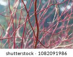 abstract colorful background.... | Shutterstock . vector #1082091986