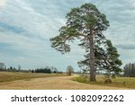 rustic landscape with a... | Shutterstock . vector #1082092262
