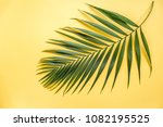 tropical leaf on yellow... | Shutterstock . vector #1082195525