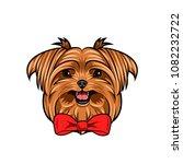 yorkshire terrier dog portrait. ... | Shutterstock .eps vector #1082232722