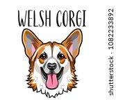welsh corgi face. dog portrait. ... | Shutterstock .eps vector #1082233892