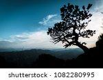 "lonely tree on ""hochlantsch""... | Shutterstock . vector #1082280995"