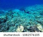 a man freedive at salakan island | Shutterstock . vector #1082576105