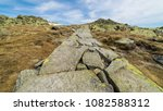 Small photo of Mountain rocky path