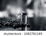 raw organic green cardamom or... | Shutterstock . vector #1082781185