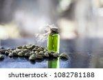 raw organic green cardamom or... | Shutterstock . vector #1082781188
