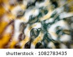 microscopic phot with organisms ... | Shutterstock . vector #1082783435