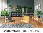 botanic living room interior...   Shutterstock . vector #1082790542
