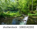 springtime in the forest near... | Shutterstock . vector #1083142202