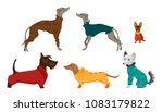 different breeds of dogs in dog ... | Shutterstock .eps vector #1083179822