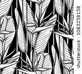 graphic strelitzia seamless... | Shutterstock .eps vector #1083258158