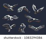 Set Of Vector Birds. Eagles An...