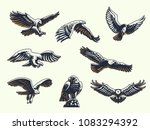 set of vector birds. eagles and ... | Shutterstock .eps vector #1083294392