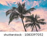 Small photo of Coconut Palms Sway Gently In The Trade Winds At Sunset In Lahaina On The Island Of Maui